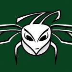 Hornets Hat ~ logo